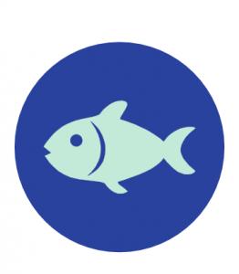 allergeni pesci