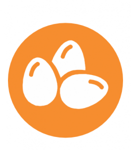 allergeni uova